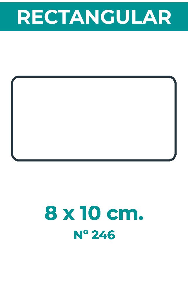 8 x 10 cm